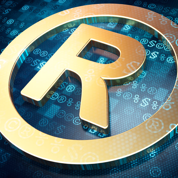 INTELLECTUAL PROPERTY, PATENTS AND TRADEMARKS